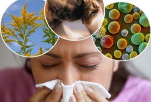 Аллерген, вызывающий дерматит, может быть как физической, так и химической природы