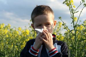 Сделать пробы на аллергию